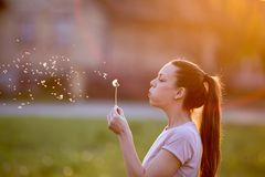 Kobiety dandelion podmuchowy kwiat fotografia stock