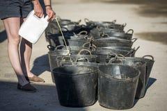 Kobiety dostawiania nadprogram koński jedzenie Obraz Stock