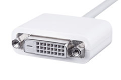 Kobiety DVI kablowy adaptator odizolowywający na bielu Zdjęcie Stock