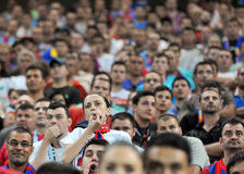 Kobiety fan piłki nożnej Zdjęcie Stock