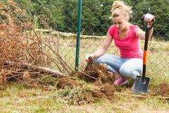 Kobiety głębienia dziura w ogródzie obraz royalty free
