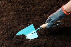 Kobiety głębienia ziemia z metalu ogrodnictwa kielnią zdjęcie stock