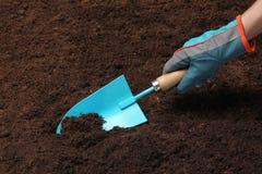 Kobiety głębienia ziemia z metalu ogrodnictwa kielnią fotografia stock