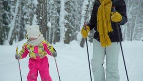 Kobiety i dziewczyny narciarstwo w lesie zbiory