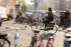 Kobiety Jadą jej rower pracować w Amsterdam, holandie Zdjęcie Stock