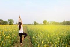 Kobiety joga medytaci kwiatu pole Obrazy Stock