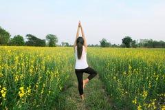 Kobiety joga medytaci kwiatu pole Zdjęcia Stock