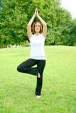 kobiety jogi park Obraz Stock