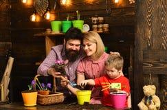 kobiety, mężczyzny i chłopiec dziecko, kocha naturę Kwiat opieki podlewanie Glebowi użyźniacze Rodzinny dzień charcica Szczęśliwy obraz stock
