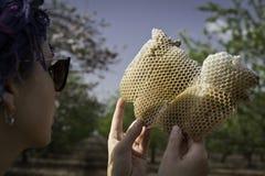 Kobiety mienia dopatrywanie przy honeycomb Zdjęcia Royalty Free