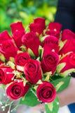 Kobiety mienia róż kwiat w naturze Obraz Royalty Free