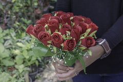 Kobiety mienia róży kwiat w naturze Zdjęcia Stock