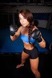 Kobiety MMA wojownik Zdjęcia Stock