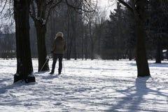 Kobiety narciarstwo w parku wśród drzew, biały śnieg, zima, co Fotografia Stock