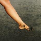 Kobiety noga. Obraz Stock