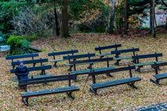 Kobiety obsiadanie na drewnianej ławce outdoors obrazy stock
