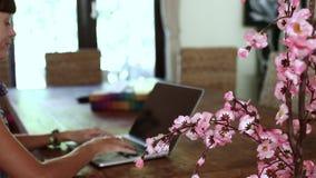 Kobiety obsiadanie przy biurkiem i działanie przy laptopem Dekoracyjny Sakura blisko kobieta zdjęcie wideo