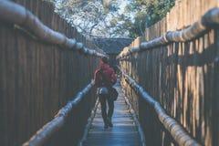 Kobiety odprowadzenie w drewnianym wąskim przejściu Ochrona dla turystów w natury i przyrody rezerwie w Południowa Afryka Pojęcie Zdjęcie Royalty Free