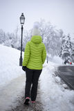 Kobiety odprowadzenie w zimy miasta parku Obrazy Stock
