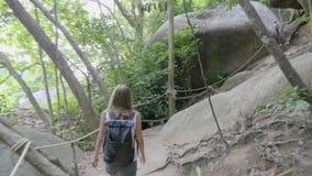 Kobiety odprowadzenie Wzdłuż drogi przemian w dżungli zbiory wideo