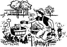 Kobiety ogrodnictwo Zdjęcie Royalty Free