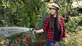 Kobiety ogrodniczki podlewania ogród zbiory wideo