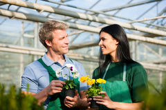 kobiety ogrodowy ogrodniczki samiec rynek Zdjęcia Royalty Free