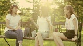 Kobiety opowiada w parku zbiory wideo
