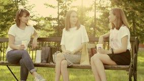 Kobiety opowiada w parku zbiory