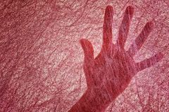 Kobiety palmowe dla cienkiego Burgundy czuli tkaninę przypomina pająk sieć arafat Rewizja używać postrzeganie obrazy royalty free