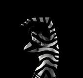 kobiety pasiasta zebra zdjęcie stock