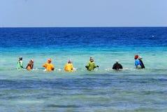 Kobiety patrzeje dla shellfishes Zdjęcie Royalty Free