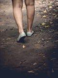 Kobiety podczas wycieczkować wycieczkę w drewnach Zdjęcie Stock