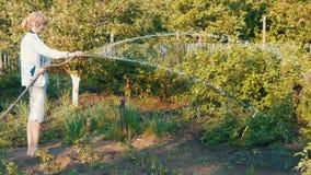 Kobiety podlewanie od wąż elastyczny rośliny w jej swój ogród zdjęcie wideo