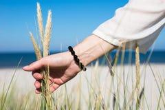 Kobiety ręka ono ślizga się przez wydmowej trawy na słonecznym dniu Fotografia Royalty Free