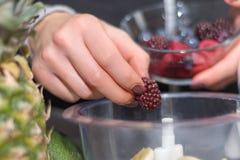 Kobiety ręka stawia czernicy w blender i narządzania smoothie zdjęcia royalty free