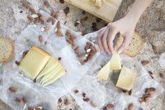 Kobiety ręka trzyma kawałek ser, grzanki i migdały, zdjęcie stock