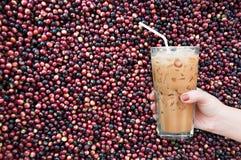 kobiety ręka trzyma szklaną lukrową kawę na unroasted kawowym surowym fasoli tle Zdjęcie Royalty Free