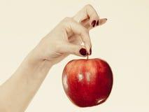 Kobiety ręka trzyma wyśmienicie czerwonego jabłka Zdjęcie Royalty Free