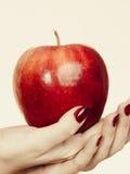 Kobiety ręka trzyma wyśmienicie czerwonego jabłka Fotografia Royalty Free