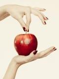 Kobiety ręka trzyma wyśmienicie czerwonego jabłka Zdjęcie Stock