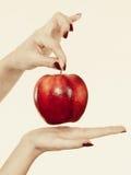 Kobiety ręka trzyma wyśmienicie czerwonego jabłka Obrazy Royalty Free