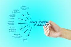 Kobiety ręka wskazuje element HACCP zasada na błękitnym tle zdjęcia stock