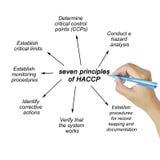 Kobiety ręka wskazuje element HACCP zasada na białym tle dla używać w produkci obraz royalty free