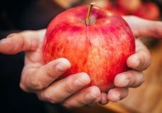 Kobiety ręka z dużym czerwonym jabłkiem Obraz Stock