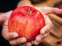 Kobiety ręka z dużym czerwonym jabłkiem Zdjęcia Royalty Free