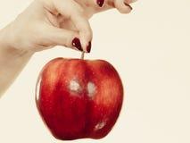 Kobiety ręki mienia czerwony jabłko, zdrowy karmowy pojęcie Obrazy Royalty Free