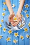 Zdrojów kwiatów woda Wręcza traktowanie Obrazy Royalty Free