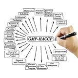 Kobiety ręki writing element GMP-HACCP dla use w produkci Obraz Royalty Free