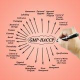Kobiety ręki writing element GMP-HACCP dla use w produkci fotografia stock